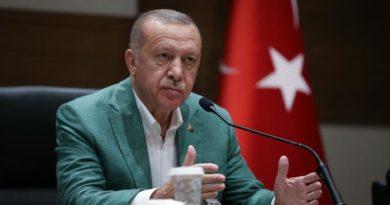 Александр Роджерс.  Эрдоган — цели и возможности