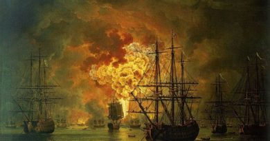 Самсонов Александр.   Как русские «турецкий флот атаковали, разбили, разломали, сожгли, на небо пустили, потопили, в пепел обратили…»