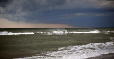 Зеленый прилив: в море у берегов Одессы появились токсичные водоросли